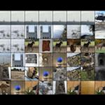 Image 1 : 10 images par ligne